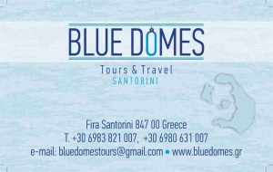BLUE DOMES card